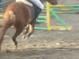 concours obstacle