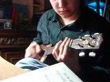 Le ukulele pour les nuls c'est trendy quand même.