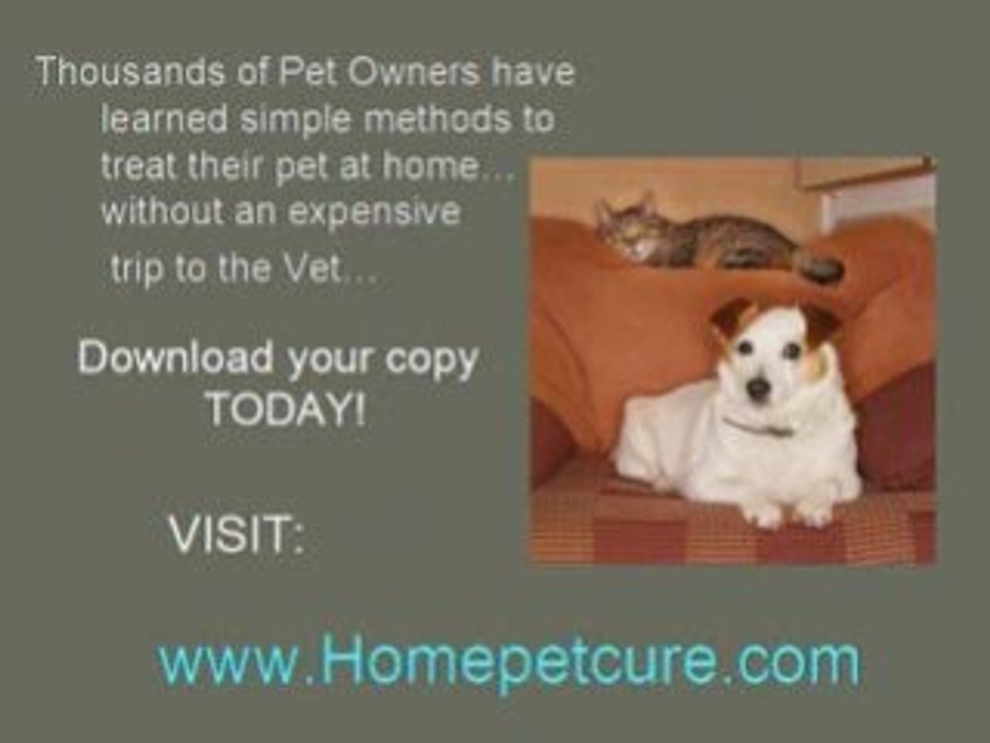 Montgomery AL Pet Meds-Treat your Pet at Home!