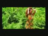 Tina Feat Richard Cave A Tes Cotés