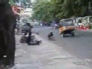 Monkey Riding Mini Bike