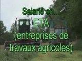 Yann et Vincent, jeunes salariés d'une entreprise agricole