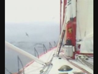 Passage du Cap Horn