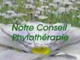 Clip easyPOP - Notre Conseil Phytotherapie