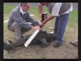 GAP - Symposium Helico 2008 - Décollage hasardeux