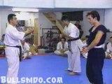 kyokushinkaï vs La boxe de l'homme ivre