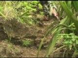 Descente de la Saline - île de la Réunion