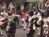 GUYANE : Carnaval 2009, Défilé du 18 Janvier à Cayenne