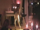SHOW CELINE DION DOUAI 24/01/2009
