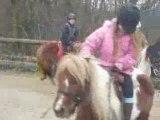 Cassy a poney
