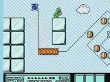 Frogsuit Mario Bros. Frog Frog Frog (Start of World 6)