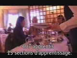 Taxe Apprentissage 2009 - CFA Carcassonne