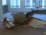 Jimmie Durham au Musée d'art moderne