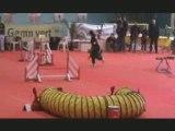 Concours Annonay Kiki & Vesta