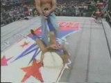 Ric Flair vs. David Flair