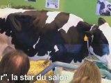 Le plus fort du salon de l'agriculture 2009