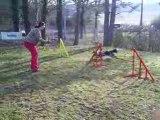 Entrainement agility 01-03/2009 Dixie 2ème parcours
