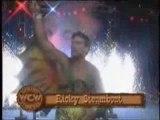 WCW Superstar Series- The Nature Boy Ric Flair 1/6