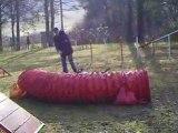 Entrainement agility 01/03/2009 Evora 1er parcours