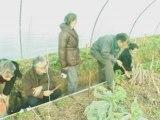 Explication d'un semis à la volée devant des élus VERTS