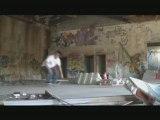 skate street cat-skateboard