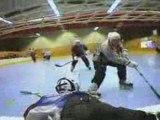roll'hockey
