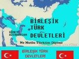 Bİrleşik Türk Devletleri