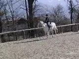 Saphir & moi (Saphir s'emballe un peu) 1 *