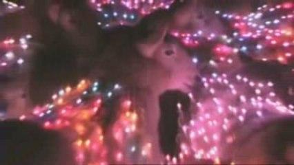 des moutons avec LED