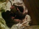 Mes ratons a 7 jours et coucou de la maman