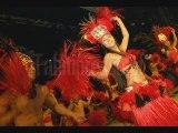 Tahiti Ora, montage photo son dernier spectacle HIVA 2009