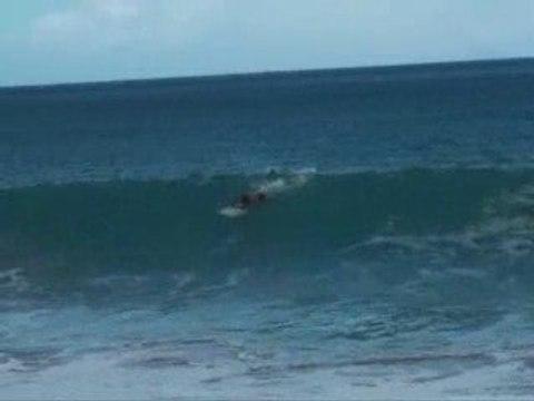Surf Guadeloupe : Vague à Deshaies - Grande Anse