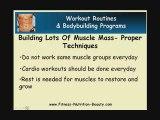 Building Lots Of Muscle Mass - Success Factors