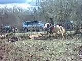 Concours de cheval