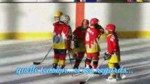 Match hockey Championnat  IDF U11 Orléans vs csg deuil 2009