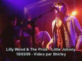 Lilly wood and the prick little johnny live fleche dor