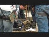Saut a l'élastique au viaduc de Saint Georges le Gaultier