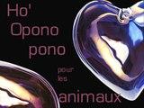 Ho'Oponopono - Nettoyer les mémoires universelles