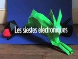 Les Siestes Electroniques 2008