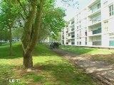 Angers : Rénovation de la Roseraie