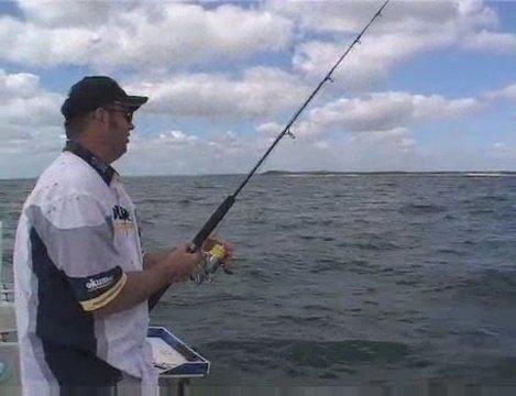 Mark Berg Special – Shark Eating Tuna