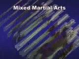 Baas Sports Curacao Muay Thai Kick Boxing Mixed Martial Arts