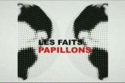 Projet Media - Les Faits Papillon - ISEN Toulon