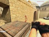 Counter-Strike Source les pro gamers