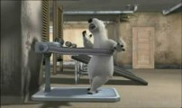 OURS BERNARD LA GYM ANIMATION CARTOON BEAR 3D HUMOUR FUN HQ