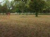 Caroussel et moi à l'obstacle
