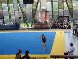 La Gymnastique , il n'y a que ça de vrai..