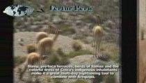 Peru Tours & Vacations - The Colca Canyon, Arequipa