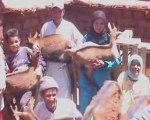 Les projets chèvres d'élevages sans frontières au Maroc