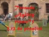Selectif GPF agility Chateaudouble 17 mai 2009